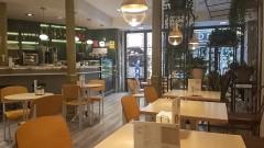 El Patio Vertical Café