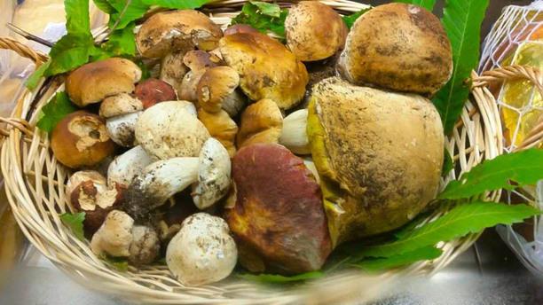 Locanda Marzolara Funghi