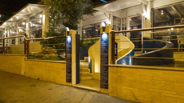 Restaurante nina 39 s fish house en roma opiniones men y for Elite fish house