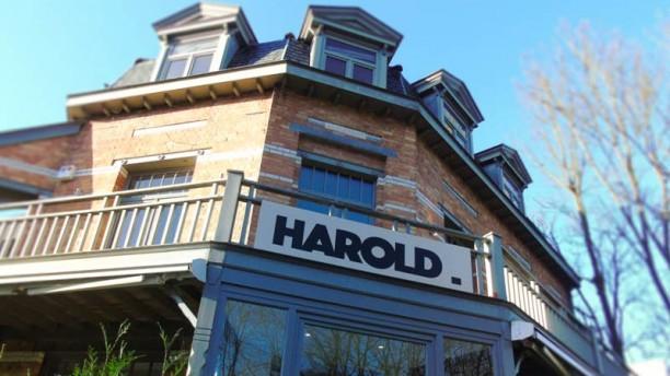 Harold La façade du restaurant Harold au croisement de l'Avenue Dolez et du Prince d'Orange