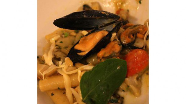 Vini e Cucina Paccheri con topinambur, cozze, basilico e pecorino