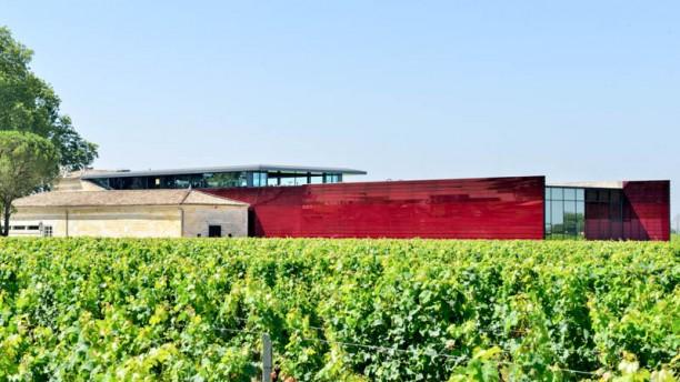 Terrasse Rouge Bordeaux