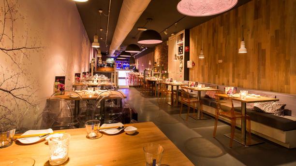 Umami Utrecht Restaurant