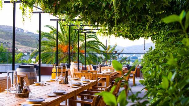 Wine Library terraço