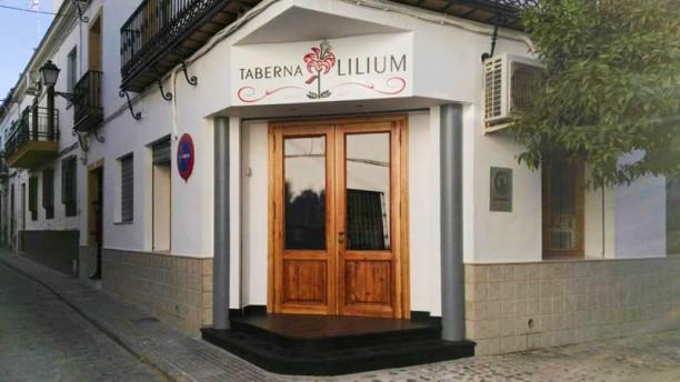 Taberna Lilium Vista entrada