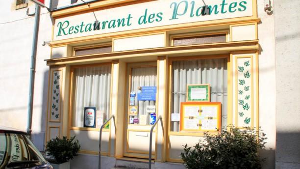 Restaurant des Plantes Entrée