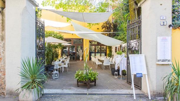Aylanto Risto gallery Entrata con giardino