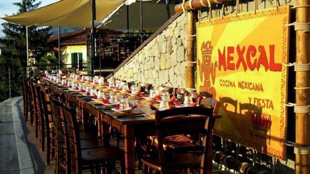 Mexcal Esteriore
