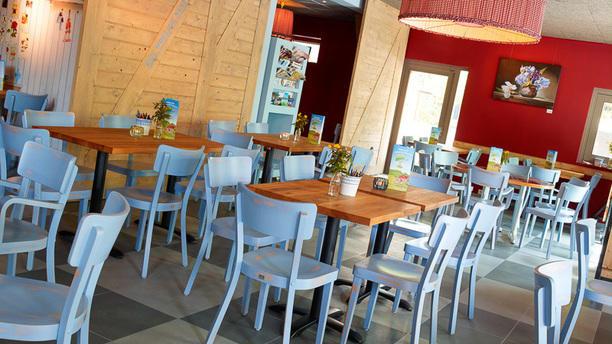 Onder de Platanen Achtergedeelte restaurant