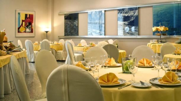 Myosotis c/o Hotel President Vista sala