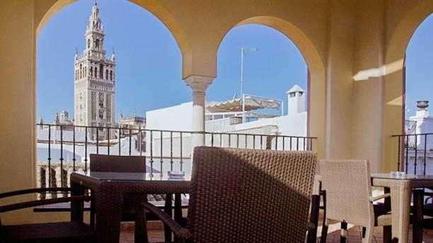 Sagardi Sevilla- Hotel Palacio Piniello Terraza con vistas a la Giralda
