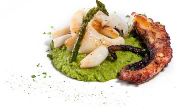 La Scala Restaurant in Cagliari Polpo tiepido all'olio evo