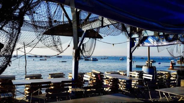 Dégustation d'Huîtres et fruits de mer - Le Vivier du Jacquet terrasse