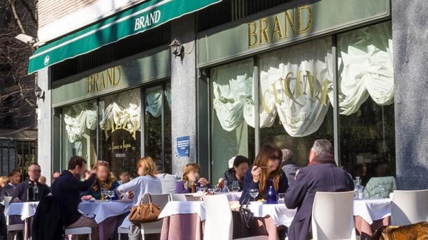 Brand terrazza
