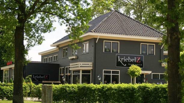 Brasserie Kriebelz Het restaurant