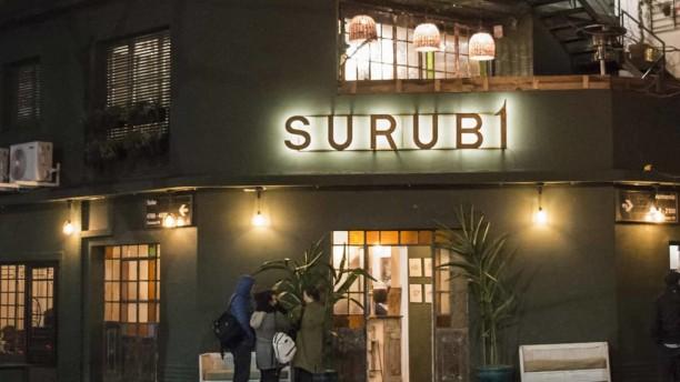 Surubí