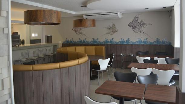 Sashiburi Lindóia rw sala
