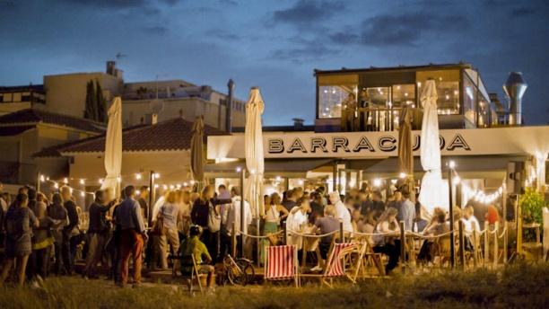 Barracuda Terraza de noche