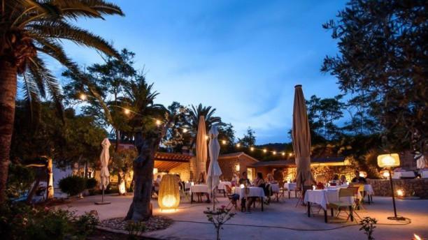 Sa Figuera Restaurant Terraza