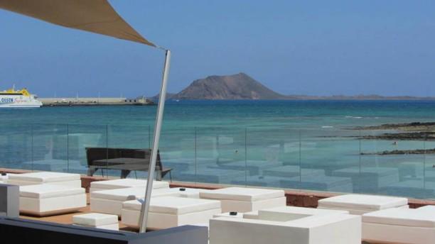 Reef Vista terraza