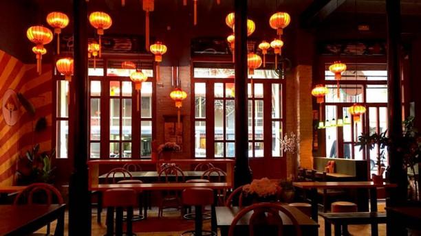 Xino mandarino Vista del interior