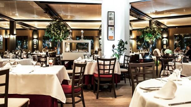 D-Wine Vista sala
