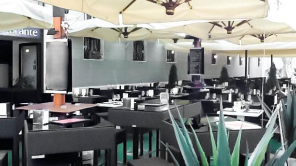 Navigando Ristorante Specialità Pesce Pizza&Grill terrazza