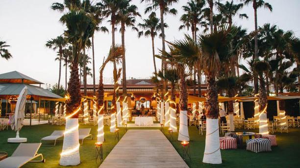 Club del Mar - Hotel Villa Padierna Palace Beach Club noche