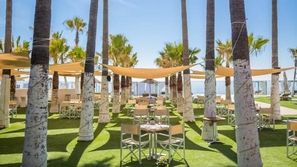 Club del Mar - Hotel Villa Padierna Palace Terraza