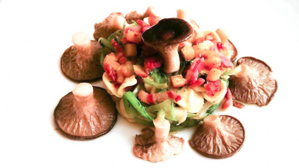 Al Cardoncello Funghi porcini