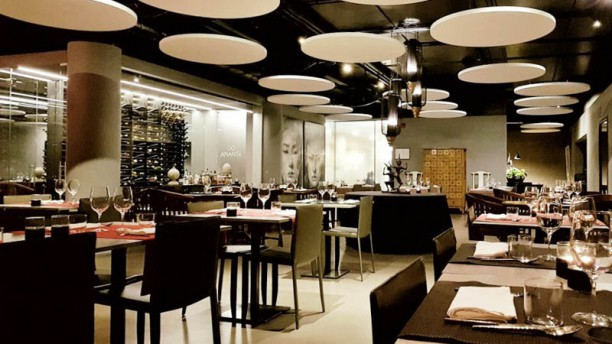 Illuminante recensioni su ristorante luce varese tripadvisor