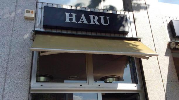Haru Esterno