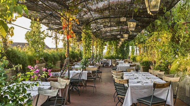 B Roof In Florence Restaurant Reviews Menu And Prices