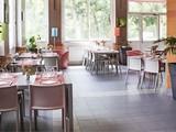 Mayor Café Restaurant