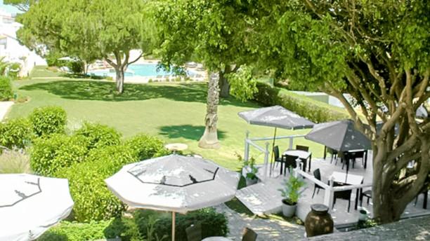 Thai Bistro Vista