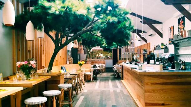 Restaurant les pins du moulleau arcachon 33120 menu - Les pins du moulleau ...