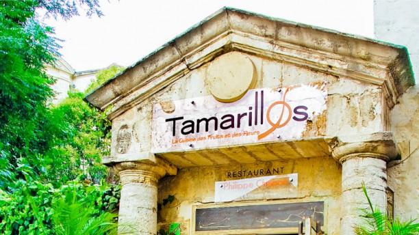 Tamarillos - Atelier des Fleurs Comestibles Façade