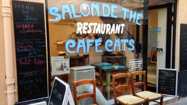 Café Cats Vue extérieure