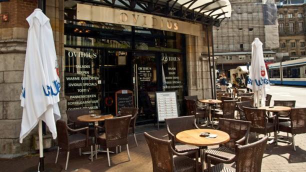 Ovidius Grand Café Terras