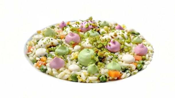 Eolo Capo Vaticano Insalata di riso con mix mayonese dello chef