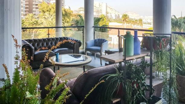 Amura Lounge Alicante Terraza