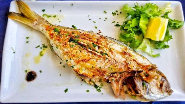 Sapori di mare Food&Fish Piatto
