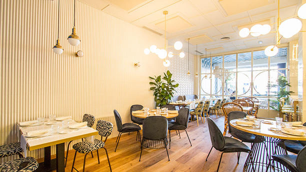 Restaurante sargo madrid en madrid lista barrio - Restaurante tamara madrid ...